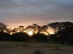 Africa 2011 064