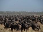 Africa 2011 080