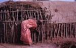 Dung hut