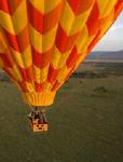 Safari hot air balloon