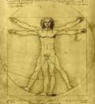 DaVinci's Vitruvian Man