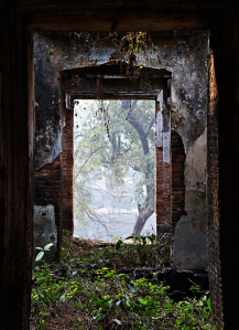 doorway IV