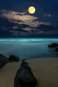 moonlight III